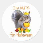 Nueces de la ardilla para Halloween Etiqueta Redonda