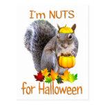 Nueces de la ardilla para Halloween Postal