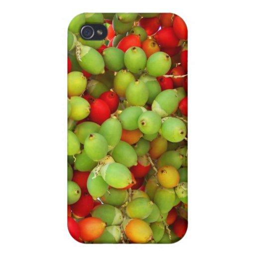 nueces de palma verde y rojo iPhone 4 funda