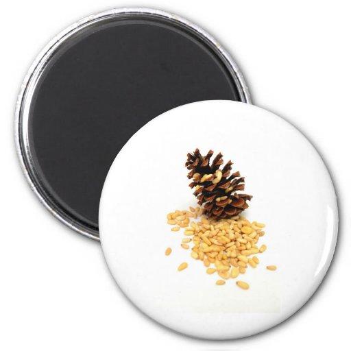Nueces de pino imán redondo 5 cm