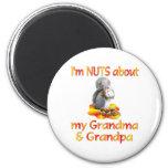 Nueces sobre abuela y abuelo imanes