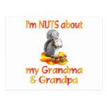 Nueces sobre abuela y abuelo tarjetas postales