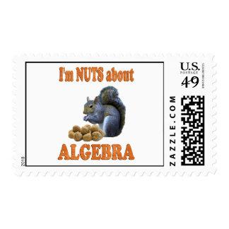 Nueces sobre álgebra sello