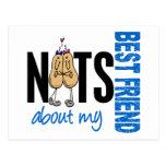 Nueces sobre mi azul del mejor amigo 1 tarjeta postal