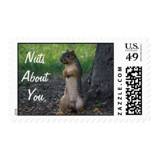 Nueces sobre usted sello