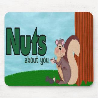 Nueces sobre usted alfombrillas de ratones