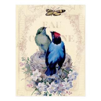 Nuestra primera alternativa casera tarjetas postales