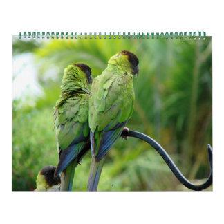Nuestra yarda calendarios