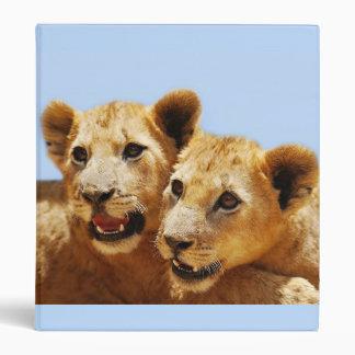 Nuestras caras lindas del león