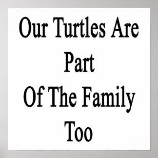Nuestras tortugas son parte de la familia también posters
