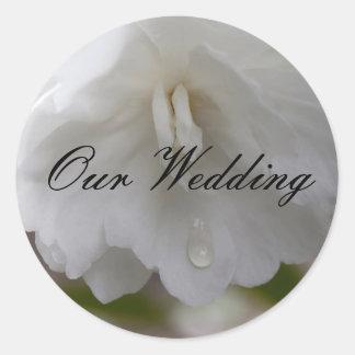 Nuestro boda, camelia blanca etiquetas redondas