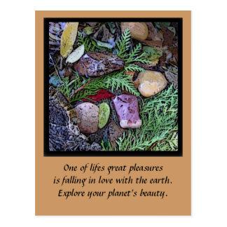 nuestro planeta hermoso tarjetas postales