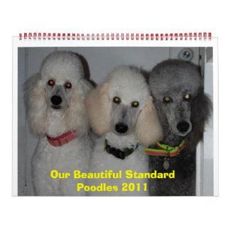 Nuestros caniches estándar hermosos 2011 calendario