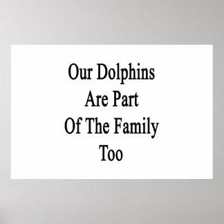 Nuestros delfínes son parte de la familia también poster