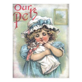 Nuestros mascotas tarjetas postales