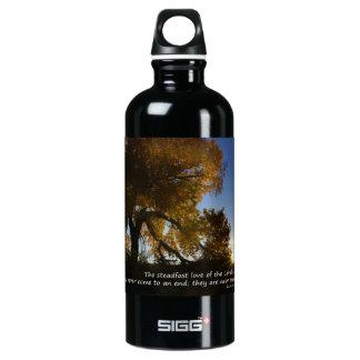 Nueva botella de las mañanas
