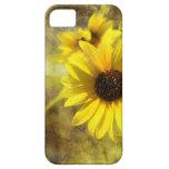 NUEVA caja de los girasoles iphone5 iPhone 5 Case-Mate Carcasa