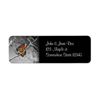 Nueva creación, monarca etiqueta de remite