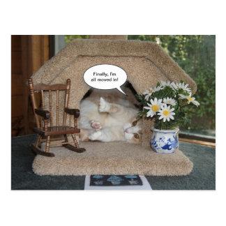 Nueva dirección del gato divertido movida postal
