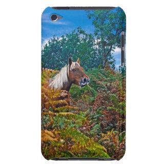 Nueva foto del potro del bosque para los Caballo-a iPod Touch Cárcasas