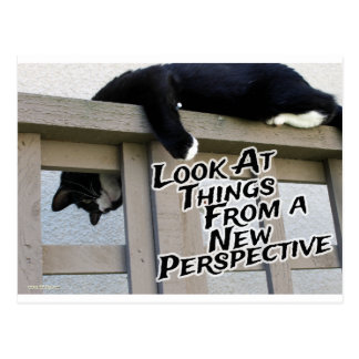 Nueva perspectiva postales