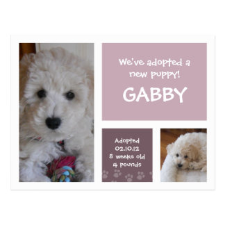 Nueva púrpura de la postal del poema del mascota p