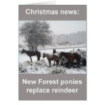 Nueva tarjeta de Navidad de los potros del bosque