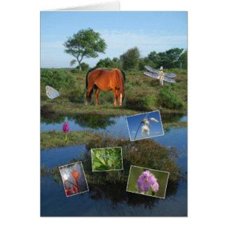 Nueva tarjeta del collage de la tierra del bosque