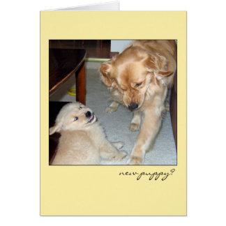 Nueva tarjeta del perrito del golden retriever
