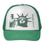 Nueva York capsula los regalos de la libertad del