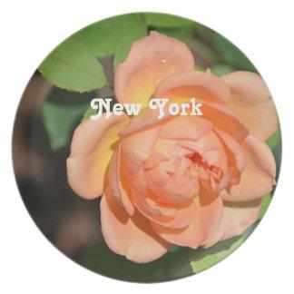 Nueva York subió Plato Para Fiesta