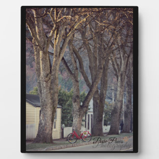 Nueva Zelanda - Arrowtown Placa De Madera