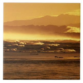 Nueva Zelanda, isla del sur, olas oceánicas y Azulejo Cuadrado Grande