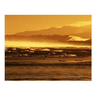 Nueva Zelanda, isla del sur, olas oceánicas y Tarjetas Postales