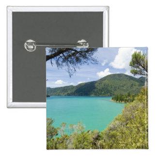 Nueva Zelanda, isla del sur, sonidos de Marlboroug Pin Cuadrado