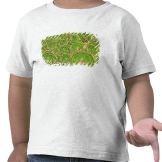 Nueva Zelanda, isla del sur. Suculento Camiseta
