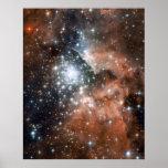 Nuevas estrellas en NGC 3603 16x20 (16x20) Posters