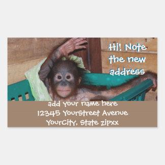 Nuevas etiquetas de dirección animales lindas rectangular pegatinas
