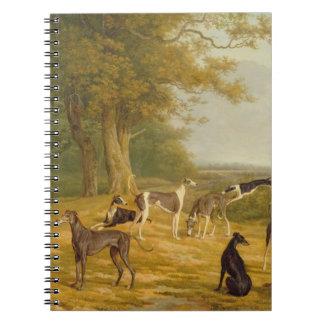Nueve galgos en un paisaje (aceite en lona) spiral notebook