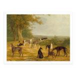 Nueve galgos en un paisaje (aceite en lona) postales