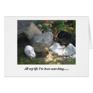 Nuevo amor tarjeta de felicitación
