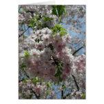 Nuevo Año-Keigo-NY de las flores de cerezo Felicitacion