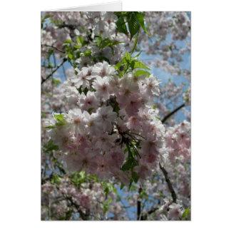 Nuevo Año-Keigo-NY de las flores de cerezo Tarjeta Pequeña