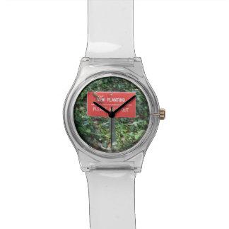 Nuevo establecimiento con el reloj del Gecko