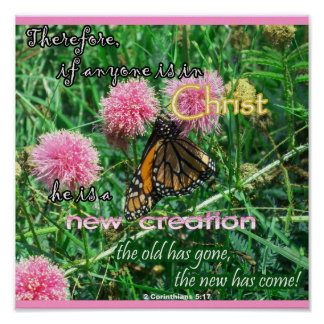 Nuevo poster de la creación