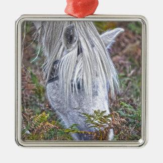 Nuevo potro blanco salvaje del bosque que pasta en adorno navideño cuadrado de metal