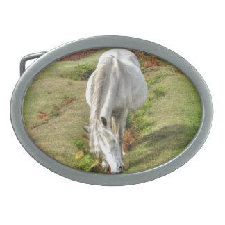 Nuevo potro blanco salvaje del bosque que pasta en hebilla de cinturón oval