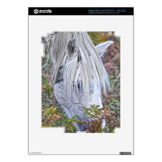 Nuevo potro blanco salvaje del bosque que pasta en pegatina skin para iPad 3