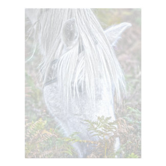 Nuevo potro blanco salvaje del bosque que pasta en plantilla de membrete