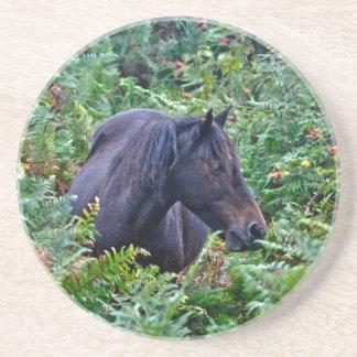 Nuevo potro negro raro del bosque - caballo salvaj posavasos personalizados